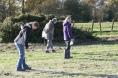 Fieldwalking Nov 2011 3