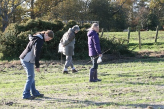 Fieldwalking Nov 2011 3